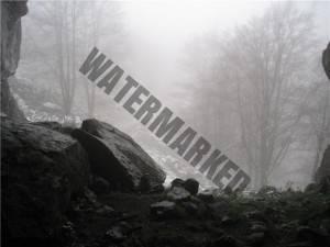 40 fotos en el concurso de fotografía Dermitek 2010