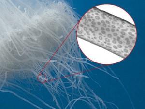celula urticante tentaculos medusa