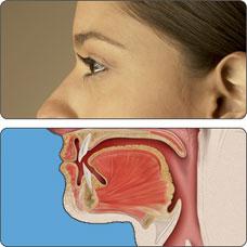 Virus del papiloma humano (VPH) y el cáncer de la orofaringe